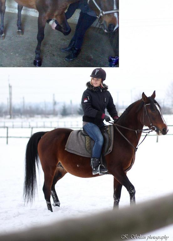 Idzie Zima Jakie Buty Zimowe Do Jazdy Konnej Spotted Jezdziectwo Konie Forum Galopuje Pl