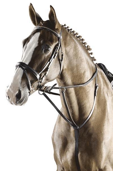 Fryzura Koreczki Jeździectwo Konie Galopujepl